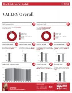 visual of Q1 stats for 2020 in The Annapolis Valley